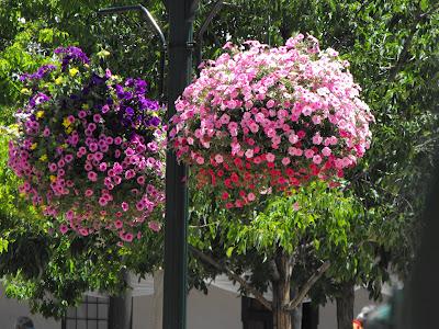 Santa Fe Trip June2012 078